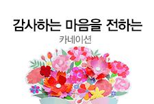 [박보경]카네이션