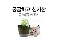 [길근영]mdp4-1 동식물 키우기