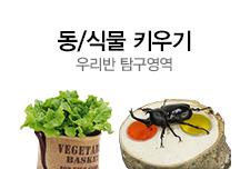 [길근영]mdp5-동식물키우기